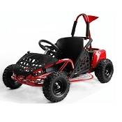 Go Kart 1000W